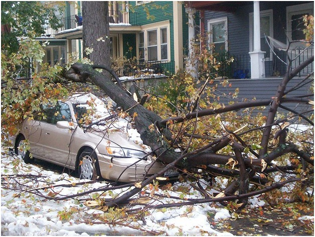The Real Financial Cost of the Winter Storms